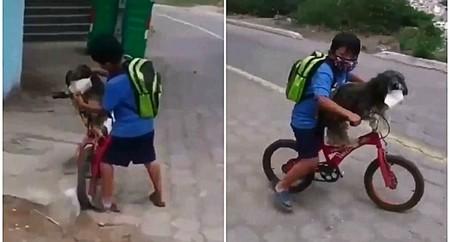 El emotivo vídeo viral de un niño poniendo la mascarilla a su perro para protegerle del coronavirus