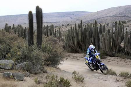 Podio Dakar 2013