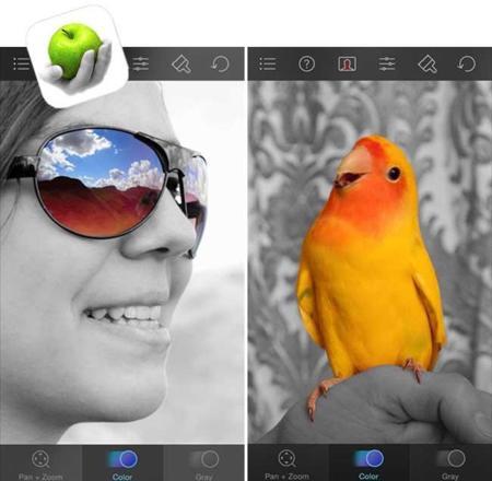 colorsplash.jpg