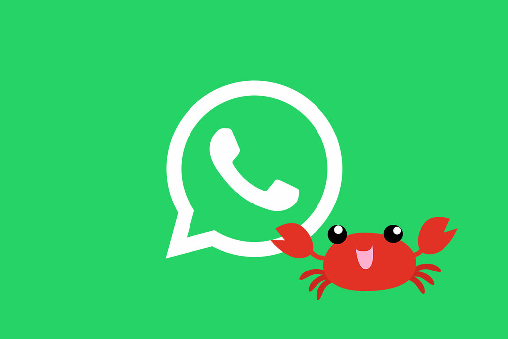 WhatsApp recula: no cambiará nada si no aceptas las nuevas condiciones, por ahora