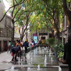 Foto 7 de 47 de la galería fotos-hechas-con-el-oppo-rx17-pro en Xataka