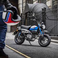 La Honda Monkey se renueva: una moto clásica de 125 cc que se adapta a la Euro 5 sin perder potencia y estrena decoración