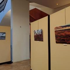 Foto 7 de 26 de la galería lg-v40-camara en Xataka