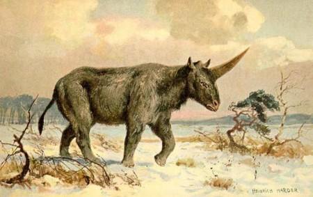 Unicornio Siberiano