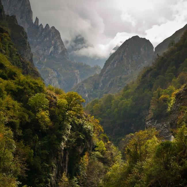 Picos Europa Espana