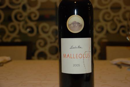 Malleolus 2005