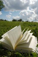 Los clichés en literatura (I)