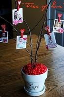 Un árbol del amor para San Valentín