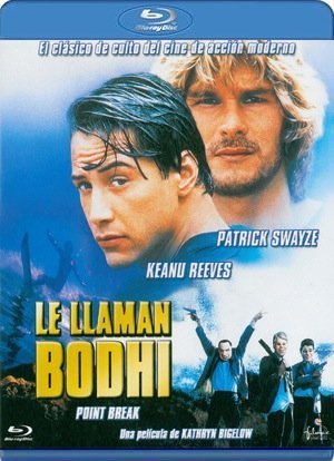 le llaman bodhi