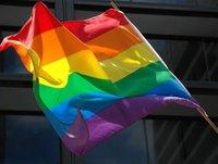 ¿La homosexualidad tiene un origen genético? (I)