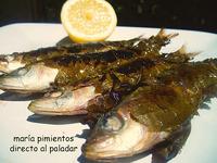 Receta de sardinas asadas en hojas de parra