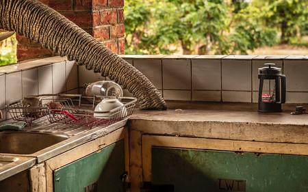 De Bruyne Elephant