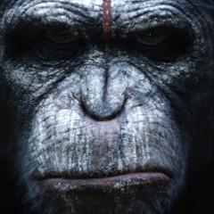 Foto 4 de 4 de la galería dawn-of-the-planet-of-the-apes-primeros-carteles en Espinof