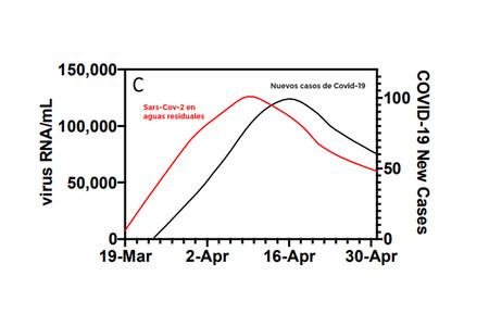 ¿Cómo predecir un brote de coronavirus? Mirando en las aguas fecales