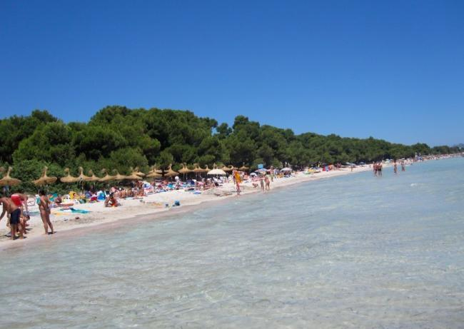 Playa Puerto Alcúdia - Mallorca