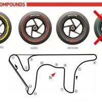 MotoGP Argentina 2015: análisis del circuito y neumáticos Bridgestone disponibles