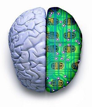¿Cuánto espacio nos queda en el cerebro para almacenar cultura? 4 megabytes