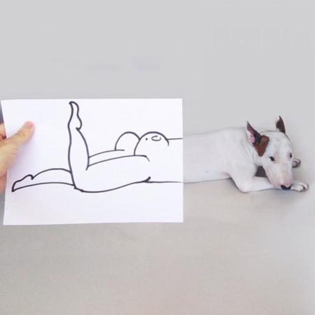 cómicos retratos de Jimmy Choo