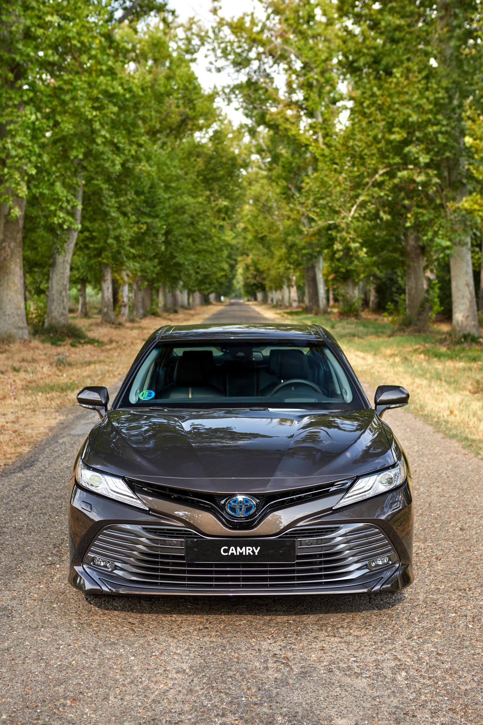 Foto de Toyota Camry 2020 (presentación) (59/75)