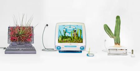 Arte y naturaleza  en ordenadores Mac de los noventa: macetas diseñadas en California