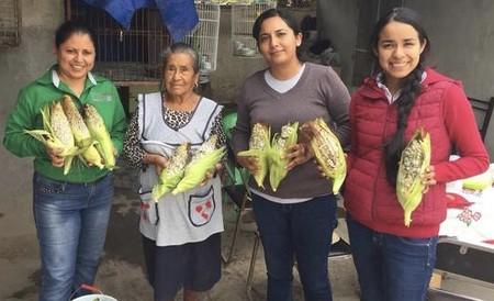 Mujeres emprendedoras al rescate del huitlacoche