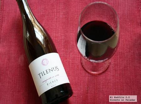 Cata del Tilenus envejecido en roble 2008