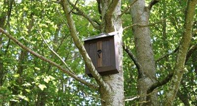 No es una caseta para pájaros, es la última antena de telefonía móvil de Vodafone
