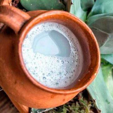 El pulque queda libre de impuestos de bebidas alcohólicas: SAT