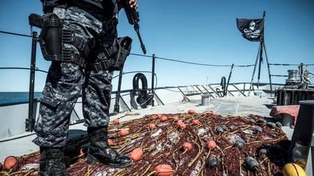 La Policía Federal y la Armada de México se unen para impedir la caza furtiva de la vaquita marina