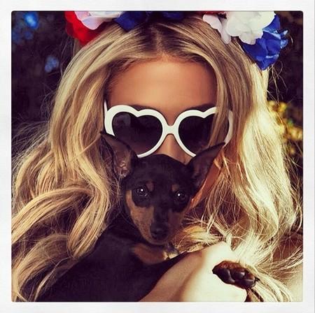 Paris Hilton presume de perritos, ¡y ellos de casa!