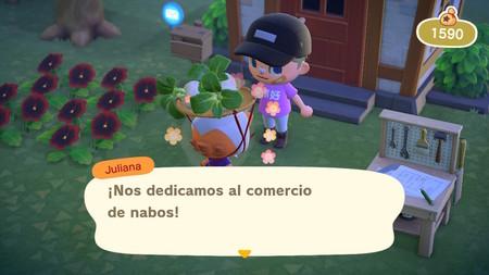 Guía Animal Crossing New Horizons: cuándo vender los nabos para conseguir el máximo beneficio