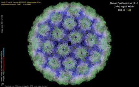 Este biosensor creado por mexicanos busca detectar de forma temprana el VPH