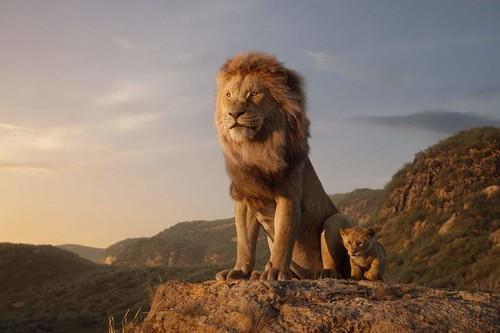 'El rey león': espectacular y fiel remake que potencia las virtudes y los problemas de la fórmula Disney