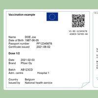 Cómo solicitar el Certificado COVID Digital de la UE por internet: el pasaporte COVID europeo ya está aquí