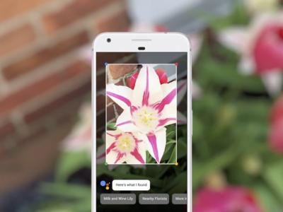 Google Lens: reconocer lo que tenemos delante será cuestión de apuntar con la cámara de nuestro smarpthone