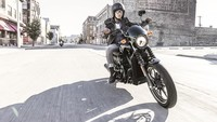 Street Premiere Night, Harley-Davidson nos presenta la gama Street