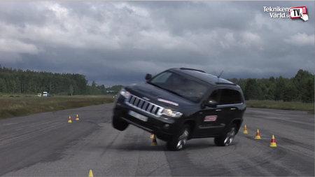 El Jeep Grand Cherokee que se enfrenta al alce... y empata