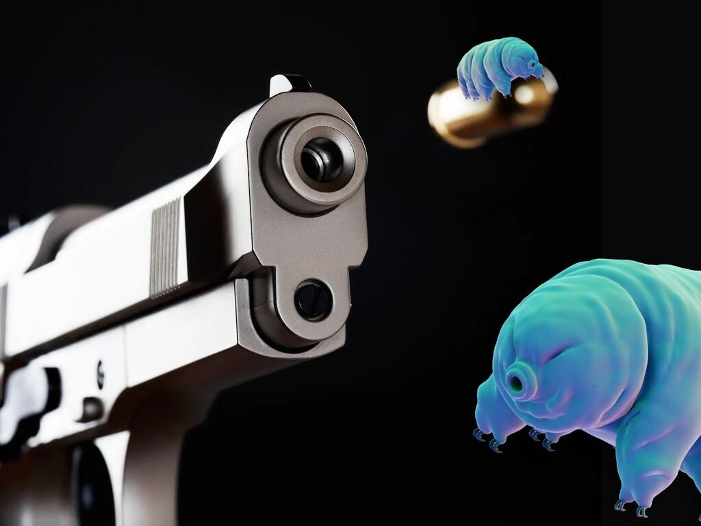 Estos científicos han estado disparando
