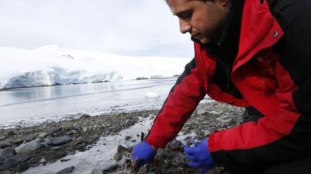 [Vídeo] Nanopartículas antárticas para curar y producir energía