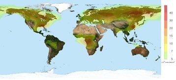 Nuevas observaciones por satélite revelan un vínculo entre bosques y lluvia ácida