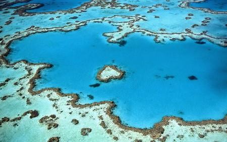 Arrecifes de coral a prueba de cambios climáticos: de nacer en la era de los dinosaurios a resistir el actual calentamiento global