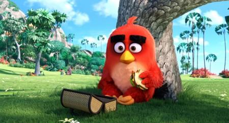 Escena Angry Birds La Pelicula