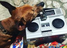 ¡Dolce & Gabbana lo vuelve a conseguir! Ponen de moda un bolso radio cassette valorado en más de 6.000 euros