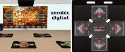 aerobic_digital.PNG