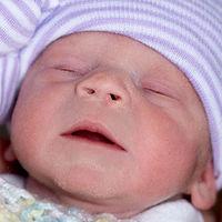 Por primera vez en Estados Unidos, nace una bebé de un útero trasplantado de una mujer fallecida