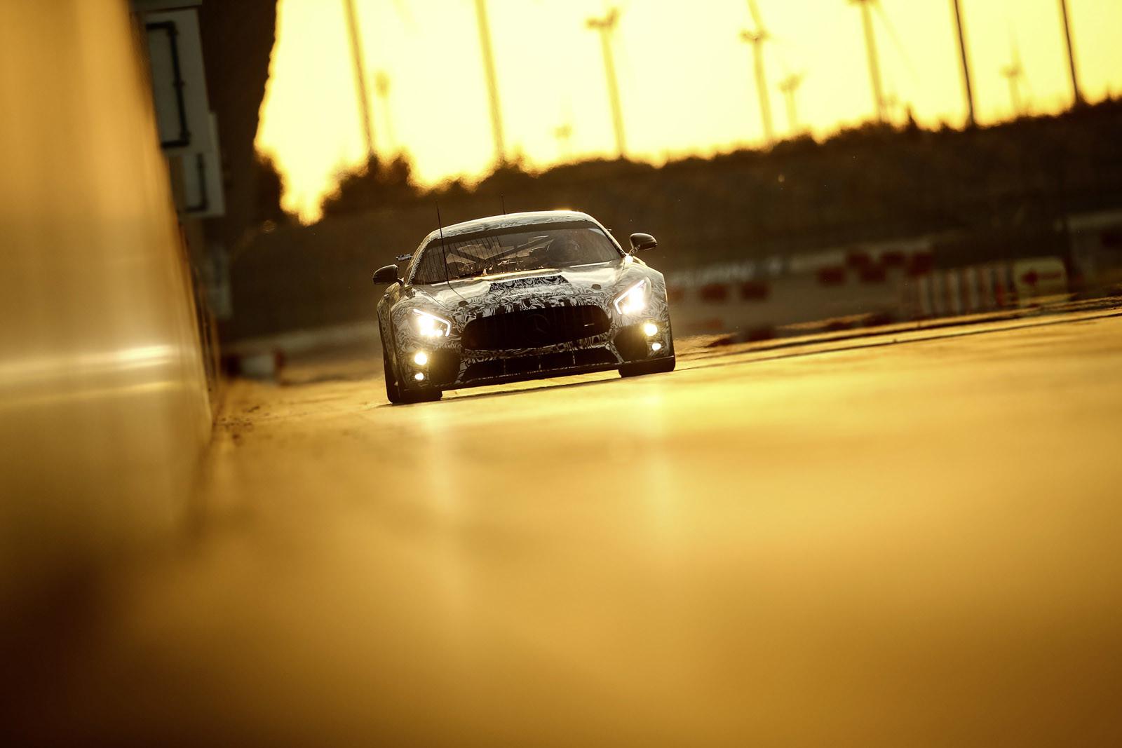 Foto de Mercedes-AMG GT4 (14/14)