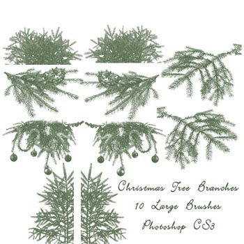 christmas_tree_branch_brushes_by_imthinkingoutloud.jpg