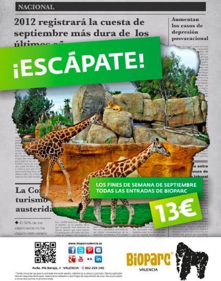 Escápate en septiembre a Bioparc Valencia, que es más barato