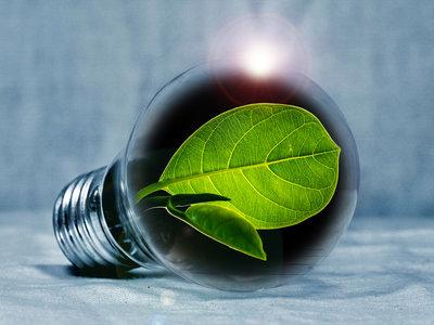 Una batería a partir de cianobacterias impresas: usando la fotosíntesis para encender una bombilla o un reloj digital