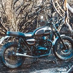 Foto 97 de 99 de la galería kawasaki-w800-deus-ex-machina en Motorpasion Moto